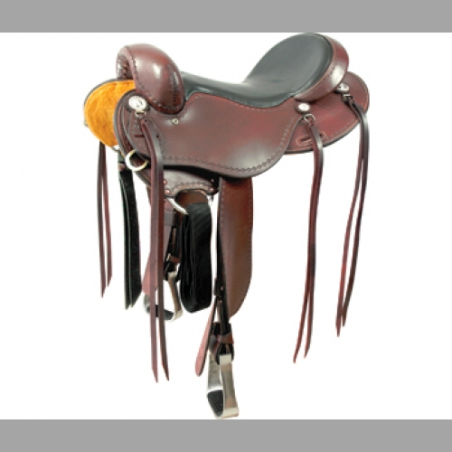 Saddles and Tack
