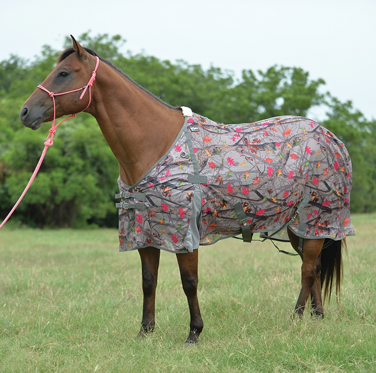 Econo Fly Rug / Sheet Hot Leaf Camo