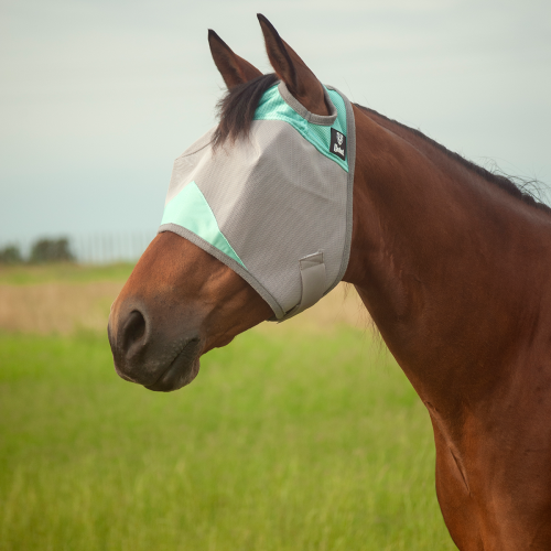 Keep your horse comfortable and protect from harmful UV rays